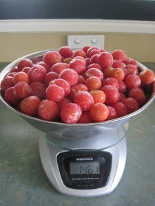 Frozen tomatoes on scales