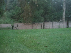 Flooding in the backyard