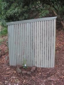 Side of woodshed