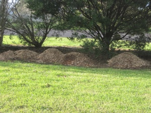 Piles of mulch