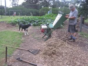 More mulching