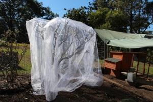 New netting